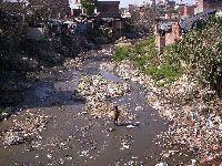 Pobre Alegria de Pobre no Brasil. 33282.jpeg