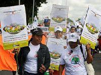 Caravana Matopiba: danos humanos e ambientais são alarmantes. 27294.jpeg