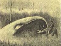 No vale da morte fica a base dos alienígenas