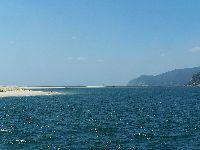 Os Verdes Questionam Governo Sobre Derrame de Ácido Sulfúrico no Rio Sado. 32300.jpeg