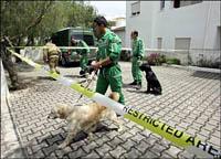 Madeleine McCann: Cães encontraram manchas de sangue