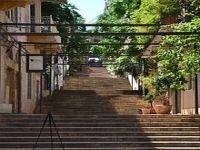 'Minha querida Beirute': saga da cultura libanesa no Brasil. 23318.jpeg