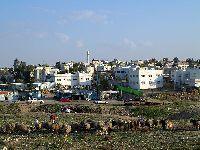 Árabes israelitas exigem justiça e igualdade. 29319.jpeg
