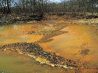Incentivado por lideranças católicas, El Salvador se torna o primeiro país a proibir a mineração. 26331.jpeg