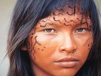 Respeito aos direitos indígenas
