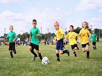 Verdes querem medidas de prevenção e combate à violência no desporto infantil e juvenil. 26335.jpeg