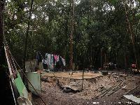Porque a demolição de casas na Jureia fere os direitos dos povos tradicionais. 31340.jpeg
