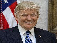 Trump ainda pode vencer as eleições. 34344.jpeg