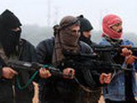 Terrorismo de estado: estilo franco-americano. 23347.jpeg