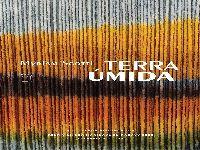 O texto como espelho da linguagem e dos seres em Terra úmida, de Myriam Scotti. 35354.jpeg