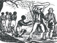 Nós, escravocratas