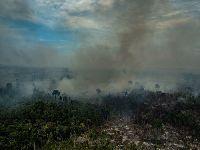 Novo arco do desmatamento: fronteira de destruição avança em 2019 na Amazônia. 32359.jpeg