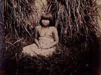 ALMG debate demarcação de terras indígenas. 20362.jpeg