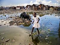 O que você não está ouvindo sobre o Haiti
