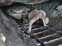 Donetsk: mineiros soterrados
