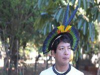 Causa indígena não pode ser partidária, afirma presidente da Associação Terra Indígena Xingu. 34367.jpeg