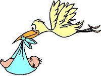 Licença-maternidade e o choro da mídia