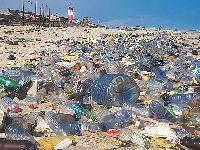 Dia Nacional do Mar - Os Verdes Propõem Incentivos aos Pescadores para Retirada de Plástico do Mar. 34371.jpeg