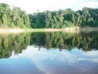 Câmara vota MP que ameaça liberar grilagem na Amazônia