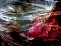 Exposicao de Ángela Ibáñez: Donde muere el água