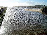 Projetos d'Os Verdes: Despoluição do Rio Lis. 31385.jpeg