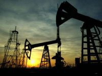 O petróleo já foi nosso?. 15399.jpeg