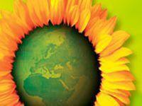 Verdes querem produção alimentar local nas cantinas públicas. 23405.jpeg
