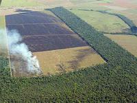 Brasil evita emissões de CO2 até 2017 e combate desmatamento