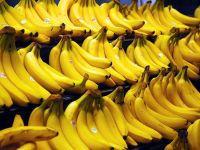 Brasil-2016: República das Bananas dos Escroques Provisórios. 24416.jpeg