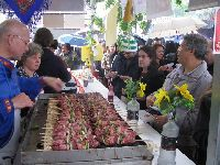 Festa  do Aniversario de 90 anos de Fundacao da Vila Zelina - Festa leste  europeia  de SP. 27419.jpeg