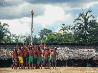 Iphan reconhece importância da diversidade linguística Yanomami. 30420.jpeg