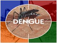 Dengue: MS mobiliza gestores do Nordeste