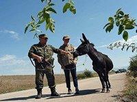 Medvedev: Estamos a proteger os povos da Abcásia e da Ossétia