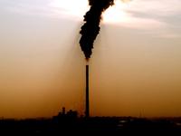 CIRVER : Os Verdes preocupados com exportação de resíduos perigosos