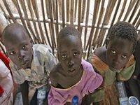 África Central: 11 milhões de refugiados
