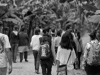 Novo Povos Indígenas no Brasil 2011/2016 destaca período de retrocessos e mobilizações. 26430.jpeg