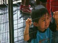 Mais de 520 crianças imigrantes continuam longe de seus pais nos EUA. 29430.jpeg