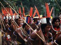 Brasil: Violência contra povos indígenas aumentou em 2012. 18437.jpeg