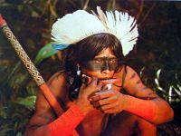 Operação Xingu já atendeu mais de 66 mil pessoas. 15439.jpeg
