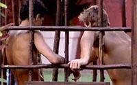 Alberto foi o último a sair da gaiola