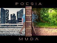 Poesia Muda: Livro de Paulo de Tarso Porrelli. 35440.jpeg