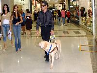 Cegueira por glaucoma cresce no Brasil. 30447.jpeg