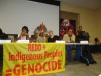 Povos Indígenas contra compensação de carbono. 17451.jpeg