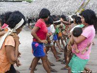 Ilegalidade e mentira contaminam o projeto do Linhão entre Manaus e Boa Vista. 29451.jpeg