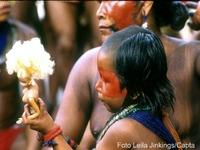 A Terra Indígena Raposa-Serra do Sol: Ameaças à soberania?