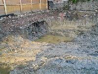 Verdes: Prevenção da Contaminação e Remediação dos Solos. 30473.jpeg