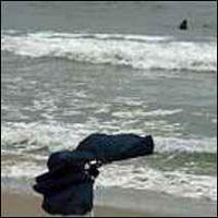Tarragona: Proibido o banho por presença do tubarão cinzento