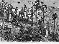 Brasil, 1822: Um País Parido pela Escravidão. 29475.jpeg