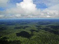 Órgão ligado à Igreja Católica critica general Heleno e defende mobilização pela Amazônia. 30481.jpeg