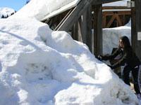 Russa ao voltar de uma viagem e tem casa demolida por engano